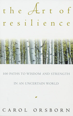 The Art of Resilience book cover