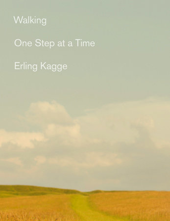 Walking One Step at a Time book cover