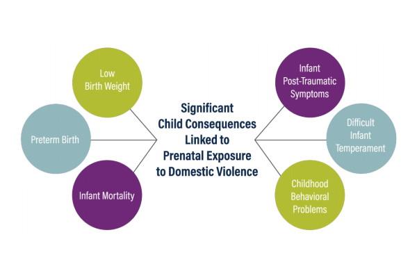 Prenatal Exposure to Domestic Violence