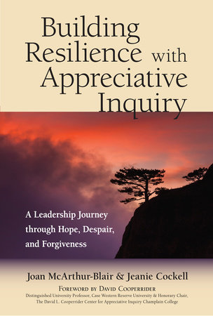 Build Resilience With Appreciative Inquiry book cover